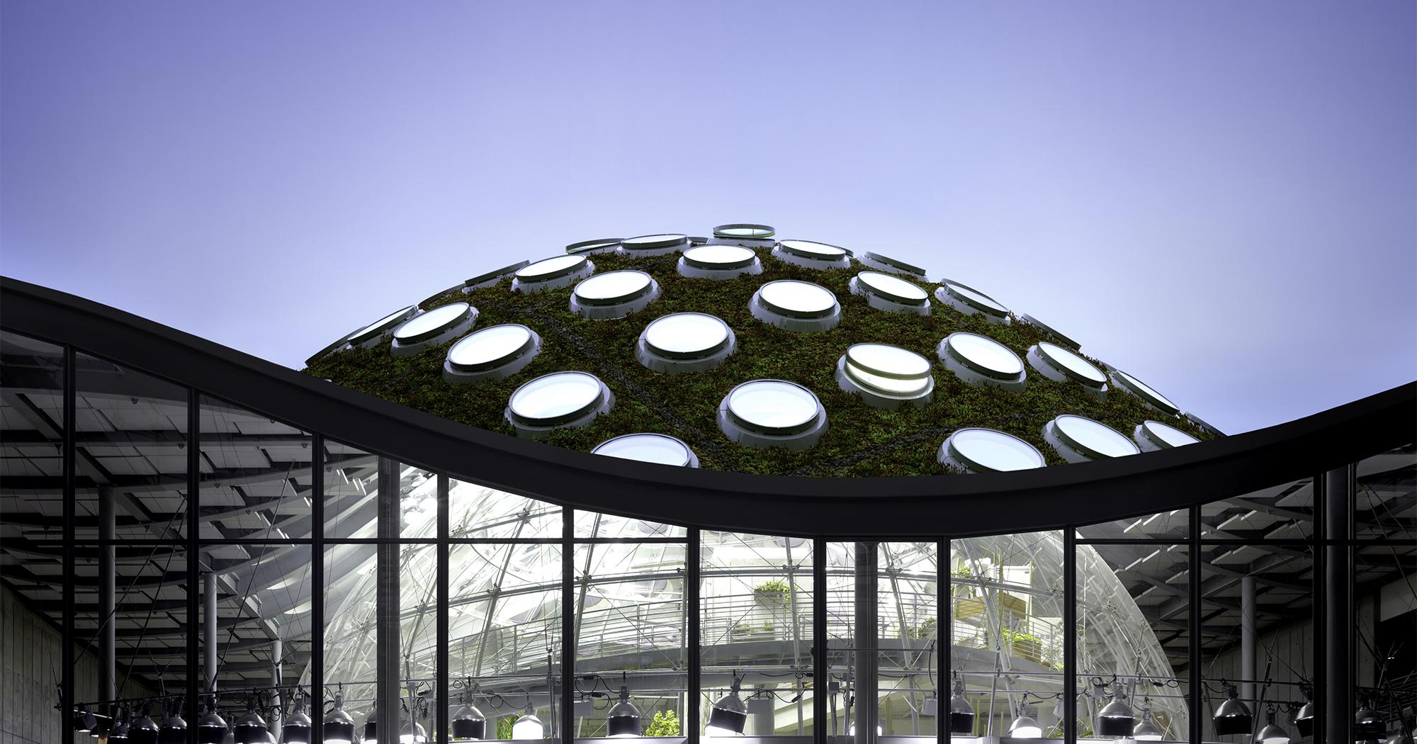 Drawing Floor Plan Efficient Building Design California Academy Of Sciences