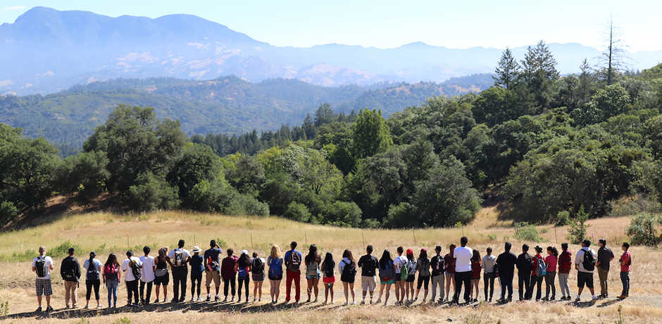 Careers in Science interns from the Academy line up in front of a scenic vista.