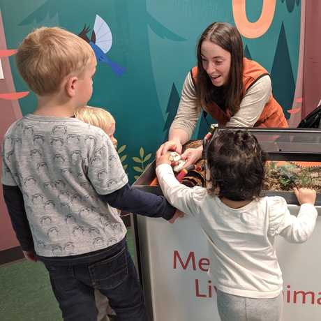 Presenter shows snake skull to young guests