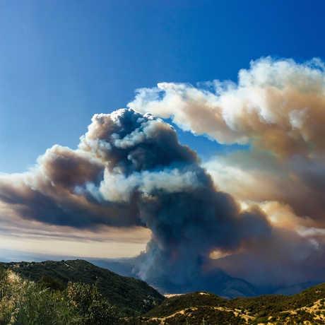 Rey Fire, Glenn Beltz/Flickr