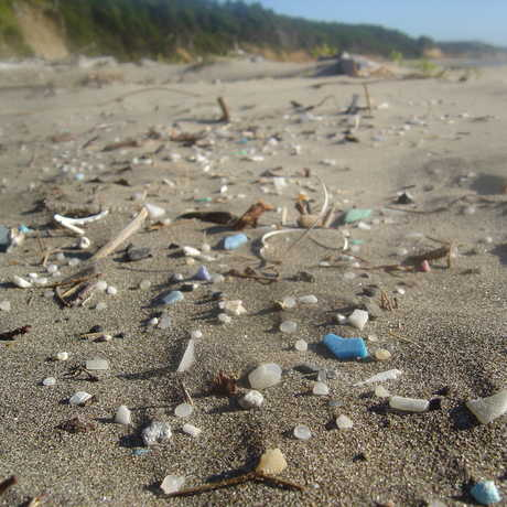 Plastic beach by circle face/Flickr