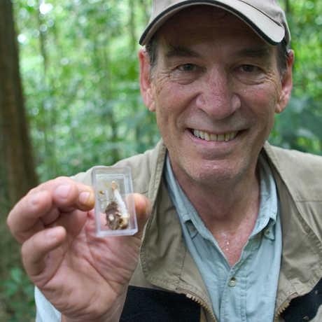 Dr. Bob Drewes