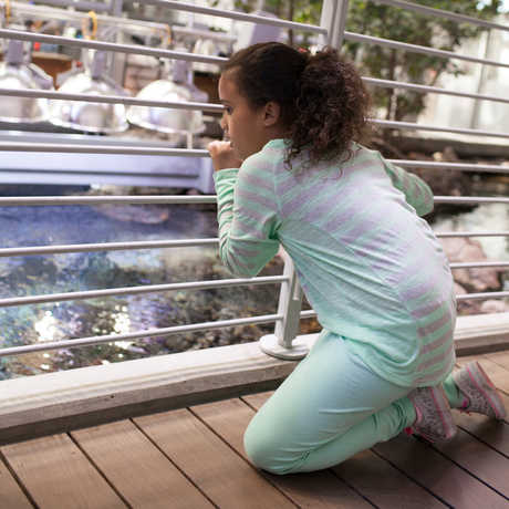 girl looking closely at lagoon on a scavenger hunt