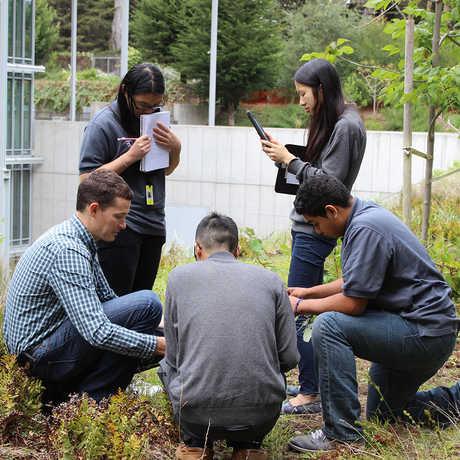high school students in garden