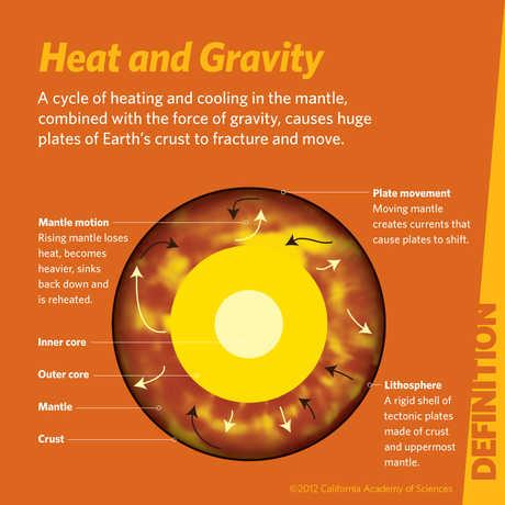 Heat and Gravity
