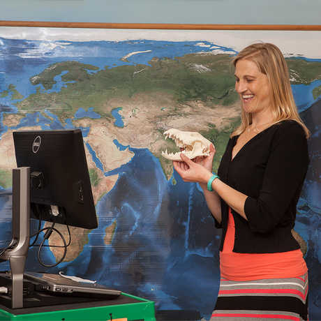 An educator holds a skull in front of a web camera.