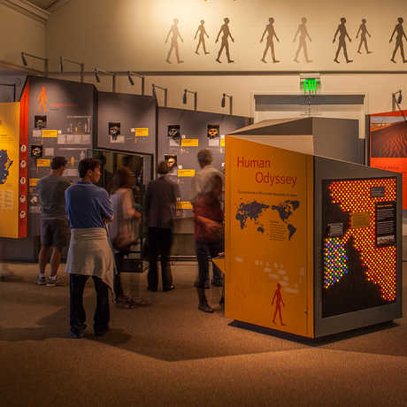 Academy visitors explore the Human Odyssey exhibit