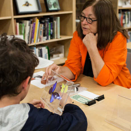 An Academy naturalist works with a young visitor to identify a butterfly.