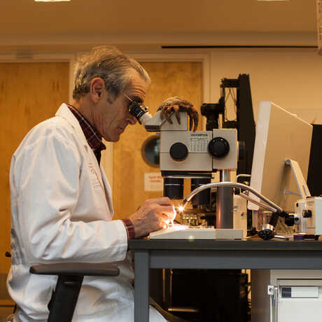 A researcher peers into the microscope-like setup of one of the Project Lab's imaging stations.