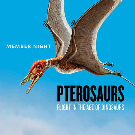 Pterosaur exhibit member event at the Academy