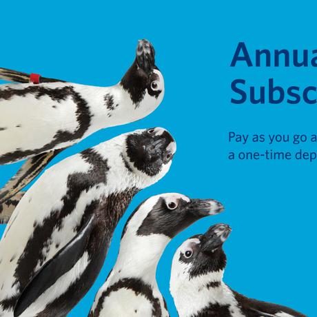 Annual Membership Subscription