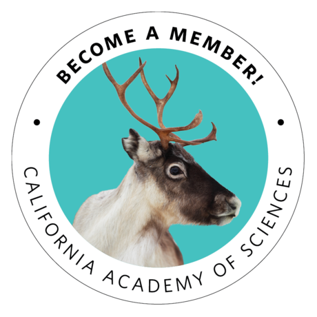 Become a Member, with reindeer