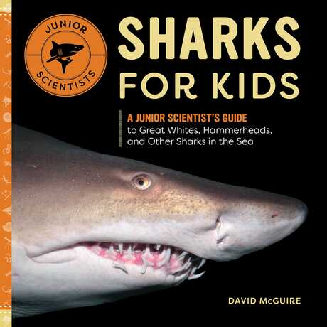 Sharks for Kids book cover by David McGuire