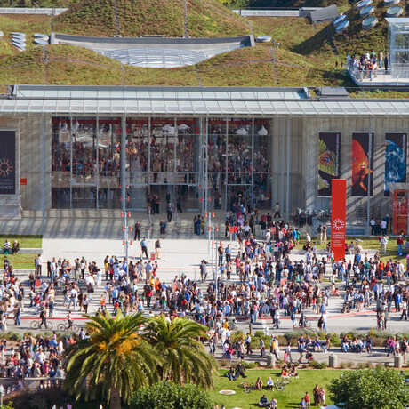 Aerial view of large crowd at Academy entrance on opening day in 2008