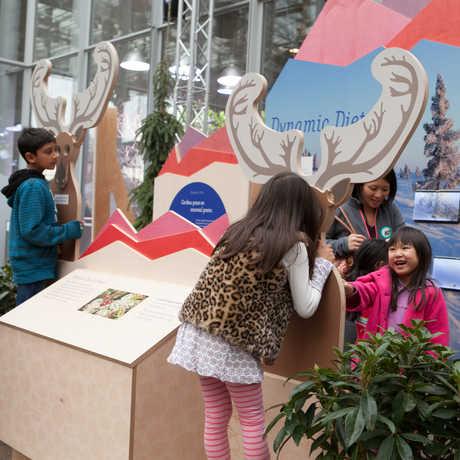 Children in exhibit