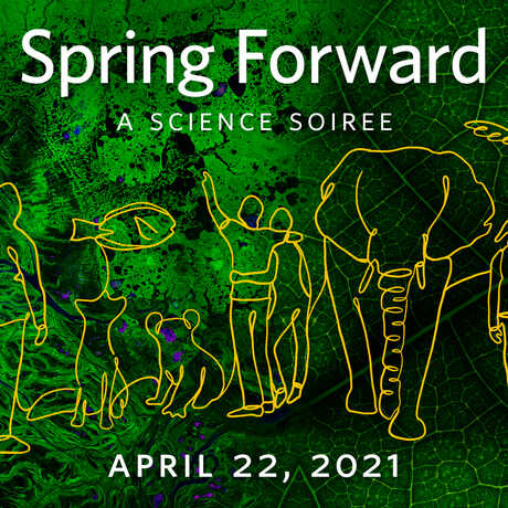 Thumbnail image of yellow line drawings of humans and animals against a green leaf background