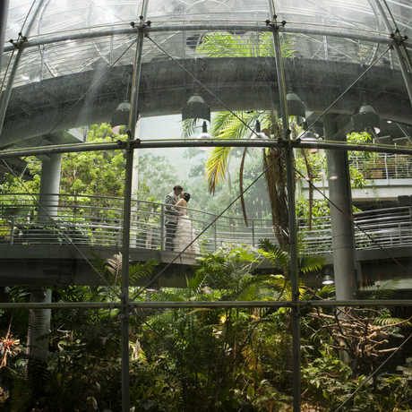 © This Modern Romance Photography (wedding couple in Rainforest)