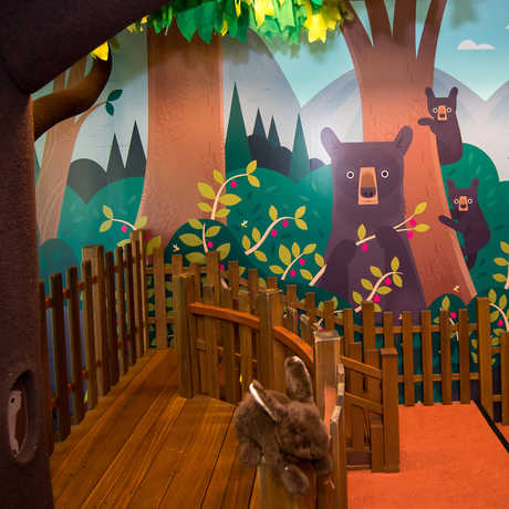 The iconic climbing tree framed by an all-new colorful mural inside the new Curiosity Grove educational play space.