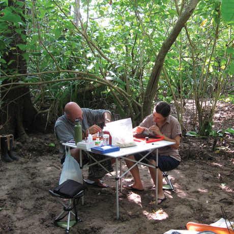 Jack Dumbacher field lab
