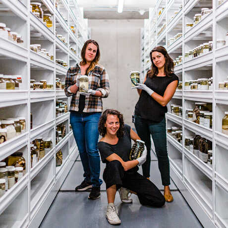 3 Academy herpetologists pose playfully with specimens
