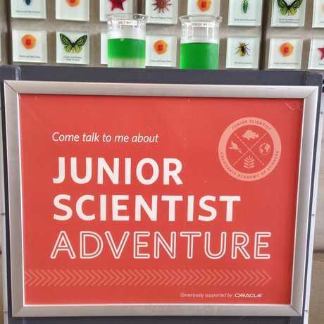 Junior Scientist Adventure: Live Science Experiment
