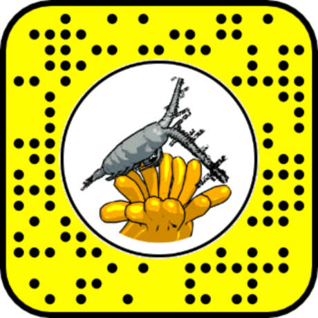 Snapcode for Polyp and Copepod AR lens