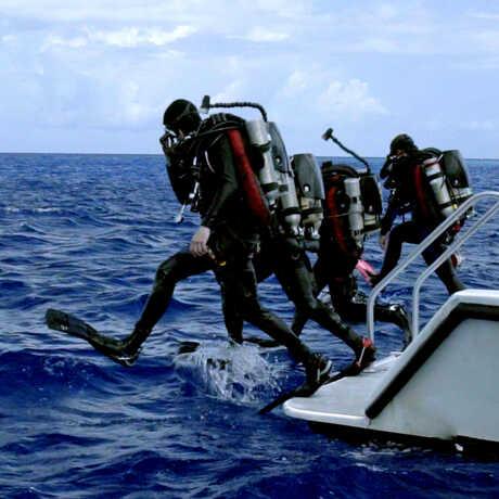 4 scuba divers step off a diving platform into the ocean