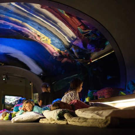 Sleepover in the Aquarium
