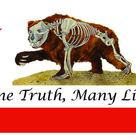 The One Truth, Many Lies flag featuring a Calfornia grizzly bear.