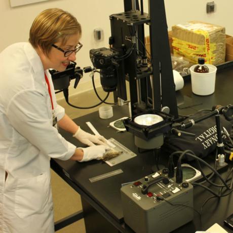 Digital Production Assistant, Kelly Jensen photographing a specimen.