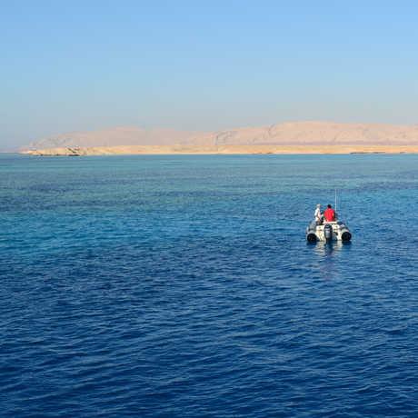 Luiz Rocha's team afloat on the Red Sea