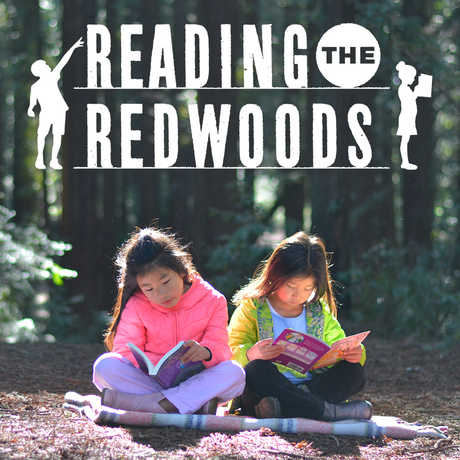 Two girls reading in a redwood tree grove
