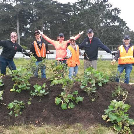 Landscape Exhibits Volunteers
