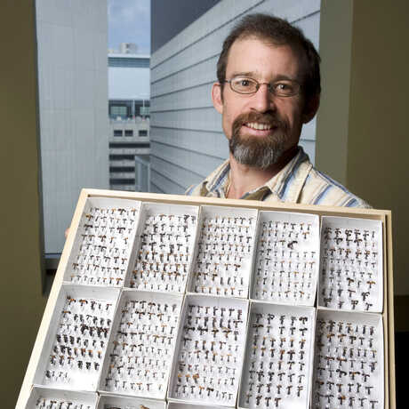 Brian Fisher holding collections tray of ants