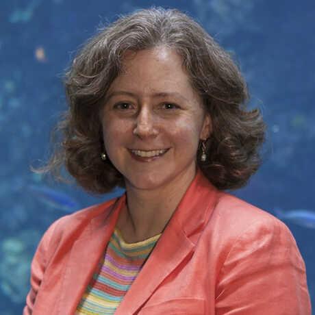 Dr. Elizabeth Babcock, Ph.D.