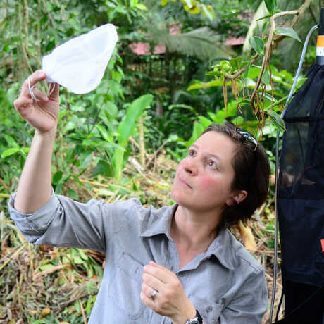 Shannon Bennett on expedition in Costa Rica
