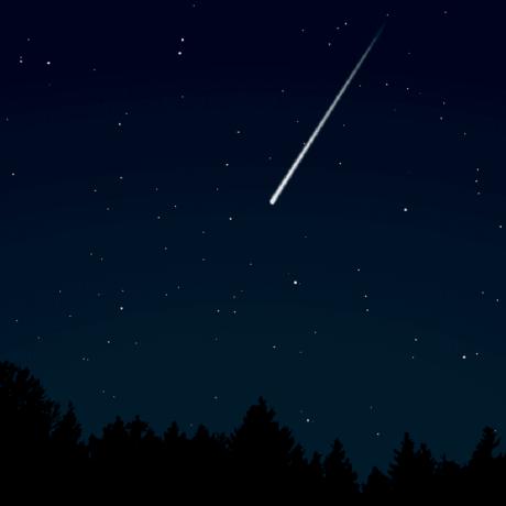 Meteor shooting through night sky