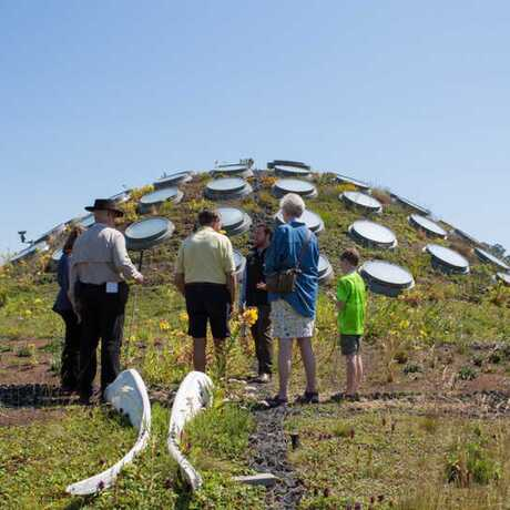 VIP Tour guests atop the Academy's Living Roof