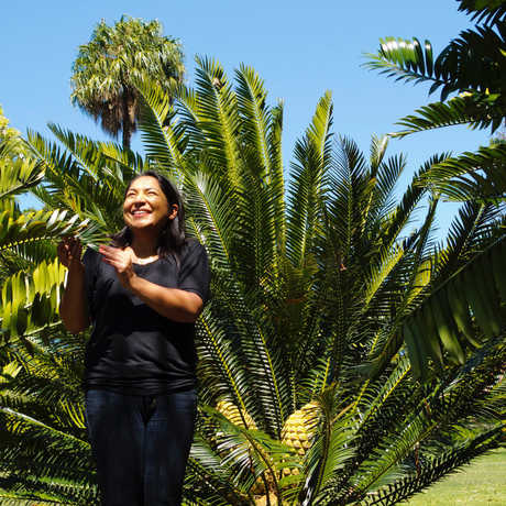 Dr. Nathalie Nagalingum stands in front of a large cycad under a very blue sky