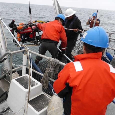 ROV NOAA