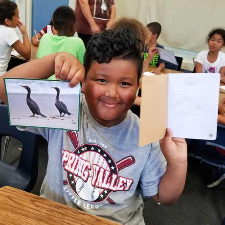 SAC Boy Bird Drawing