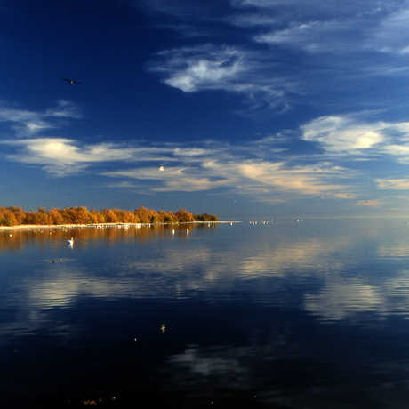 Salton Sea, public domain