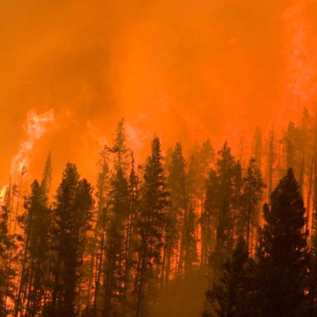 2007 Castle Rock Fire