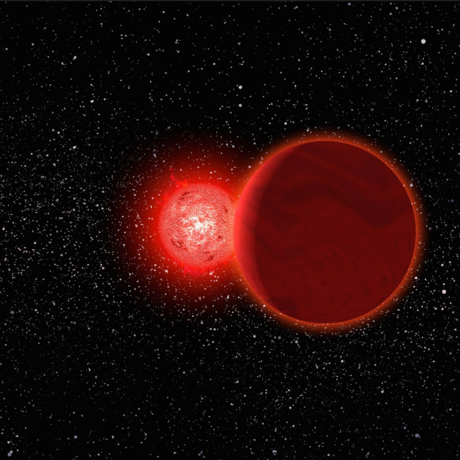 Scholz's star with its brown-dwarf companion