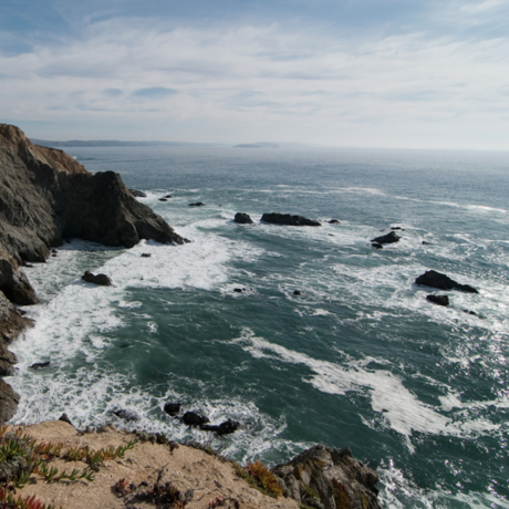 The coast near Bodega Bay