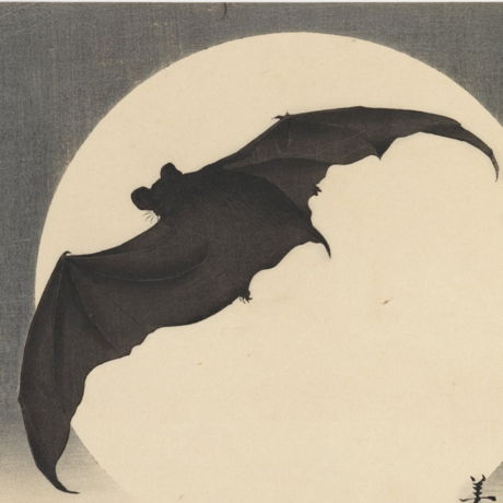 Bat Before the Moon, ca. 1910, Biko Takashi, Brooklyn Museum