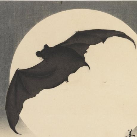 Bat Before the Moon, ca. 1910, Biko Takashi, Brooklyn Museum