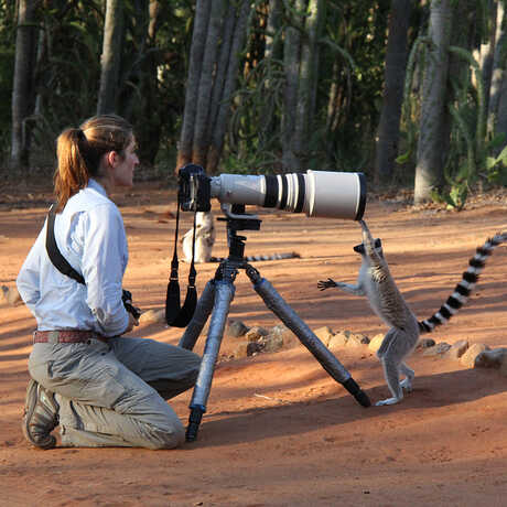 Suzi Ezterhas looks through a camera while a lemur hangs off the other end of it