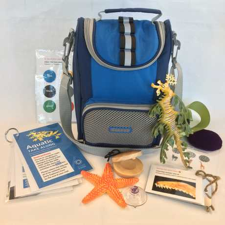 Photo of the Aquatic Take Along bag and activities.