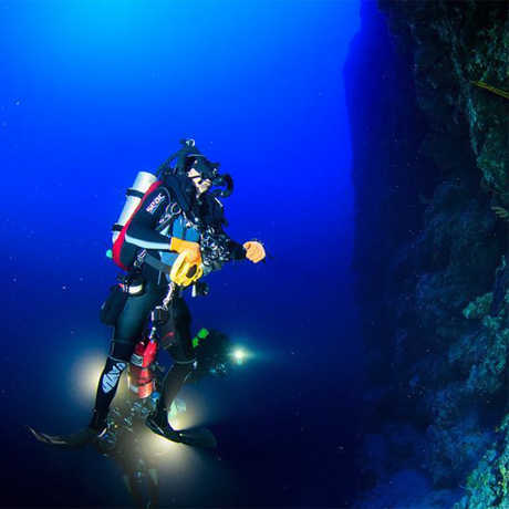Tech diver studying a deep coral wall
